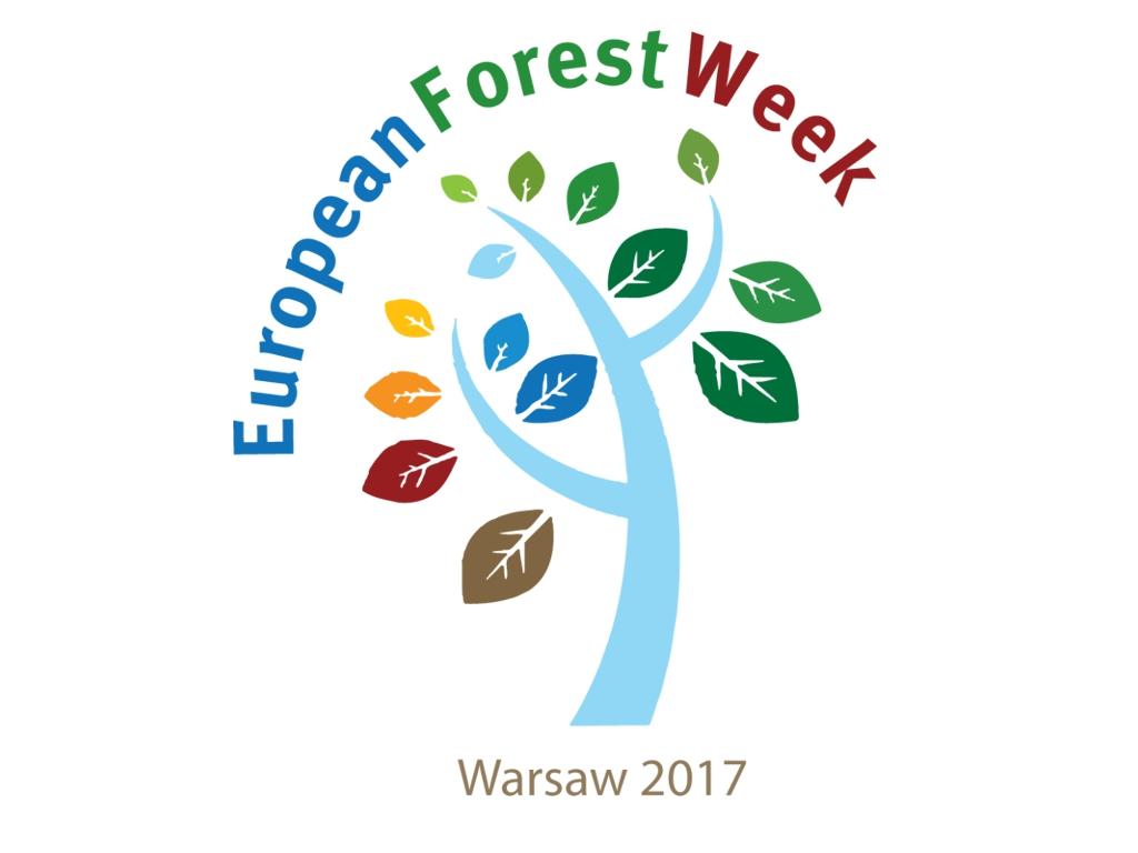 EFW_2017