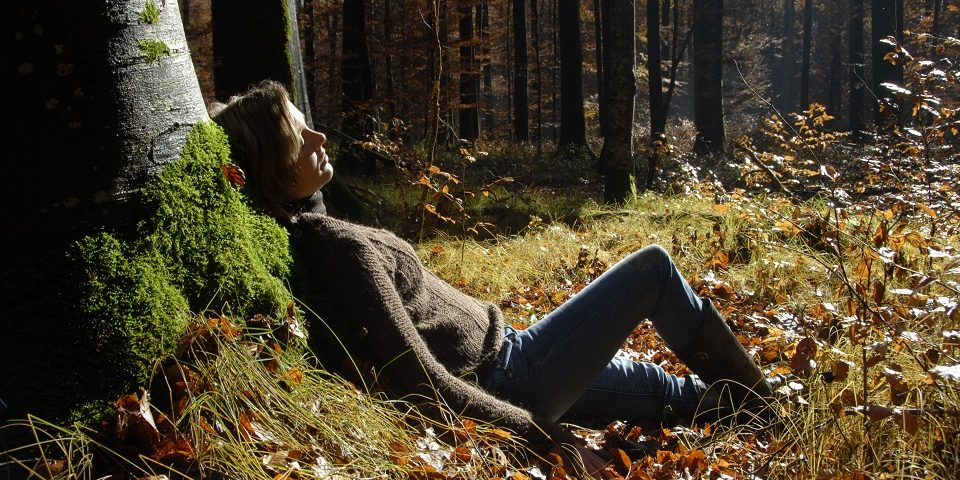 Relax in forest