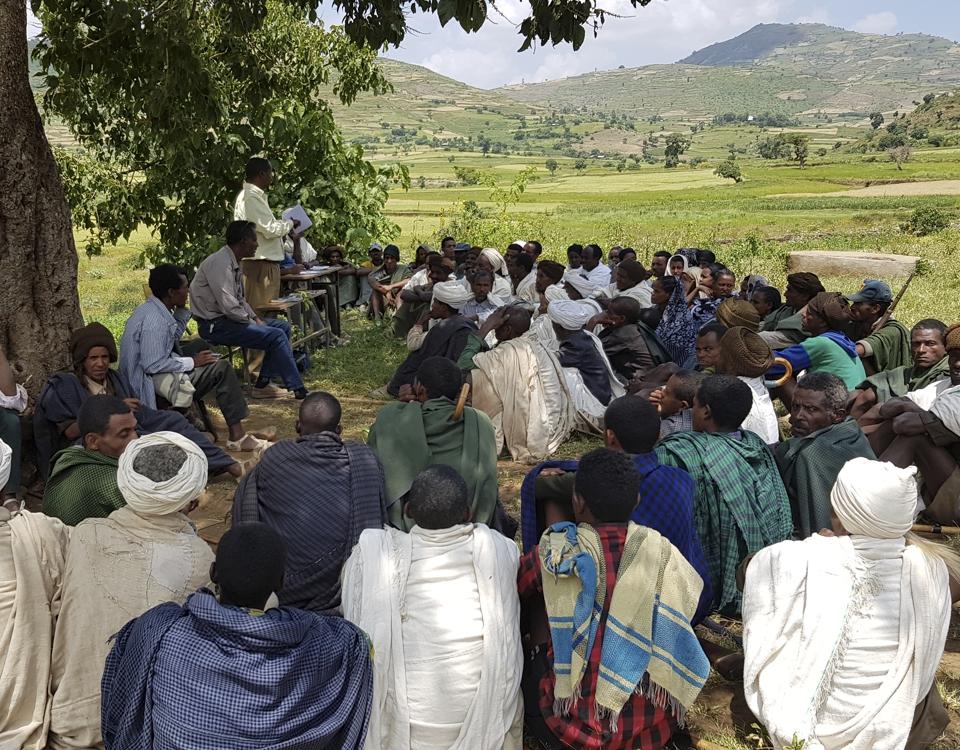 Ethiopia (photo: Vilma Issakainen, Finish Forest Association)