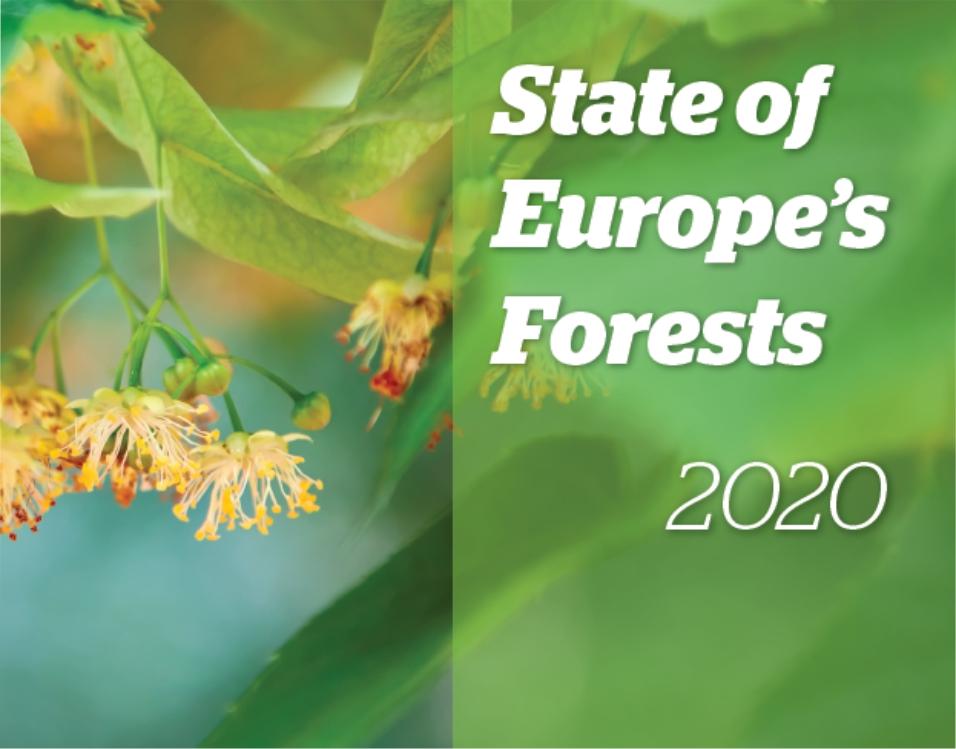 titule_forest EU